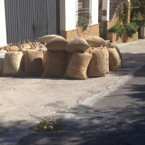 Almond sacks - Chite